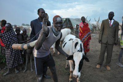 Dinka ox-songs (cattle songs)